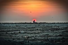 151.Phone Sunset-2