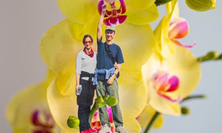 Día 54 – Elogio a la primavera